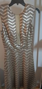 Sequin zig zag mesh dress fit and flare